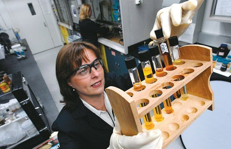 Ford celebra su décimo aniversario utilizando espuma a base de soja