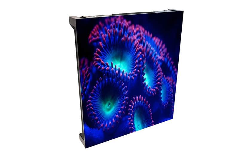 Nuevo Christie Velvet CorePlus LED