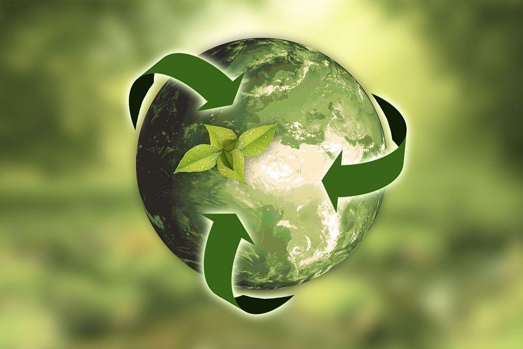 Jabil Packaging Solutions lanza nuevos servicios de embalaje sostenible