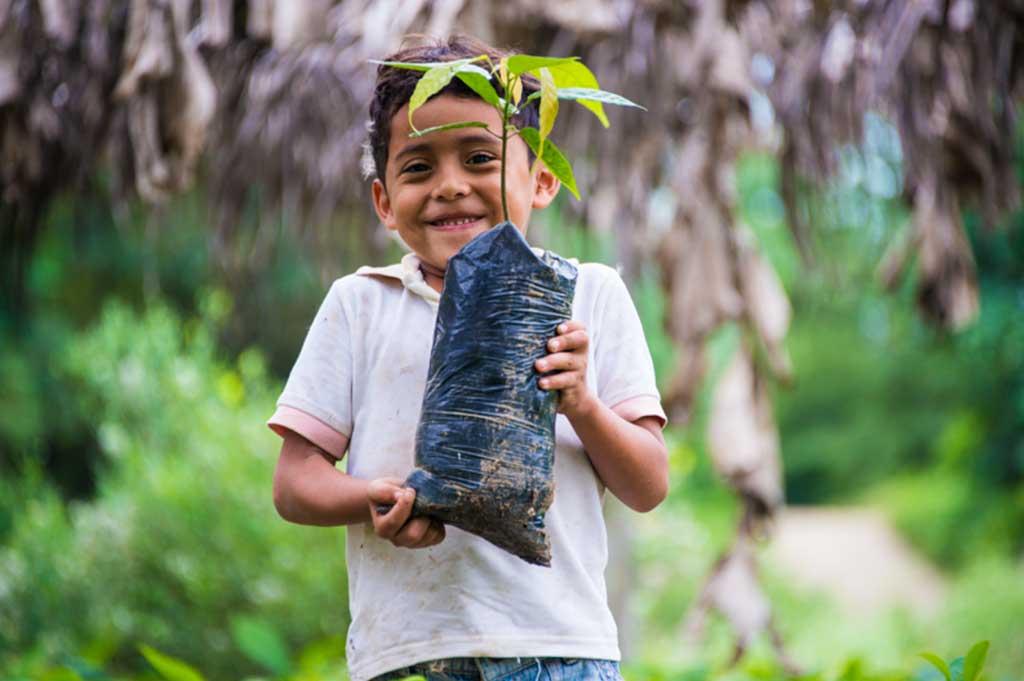 ONG AIDER incrementa hasta 10 veces su alcance en favor de la Amazonía peruana