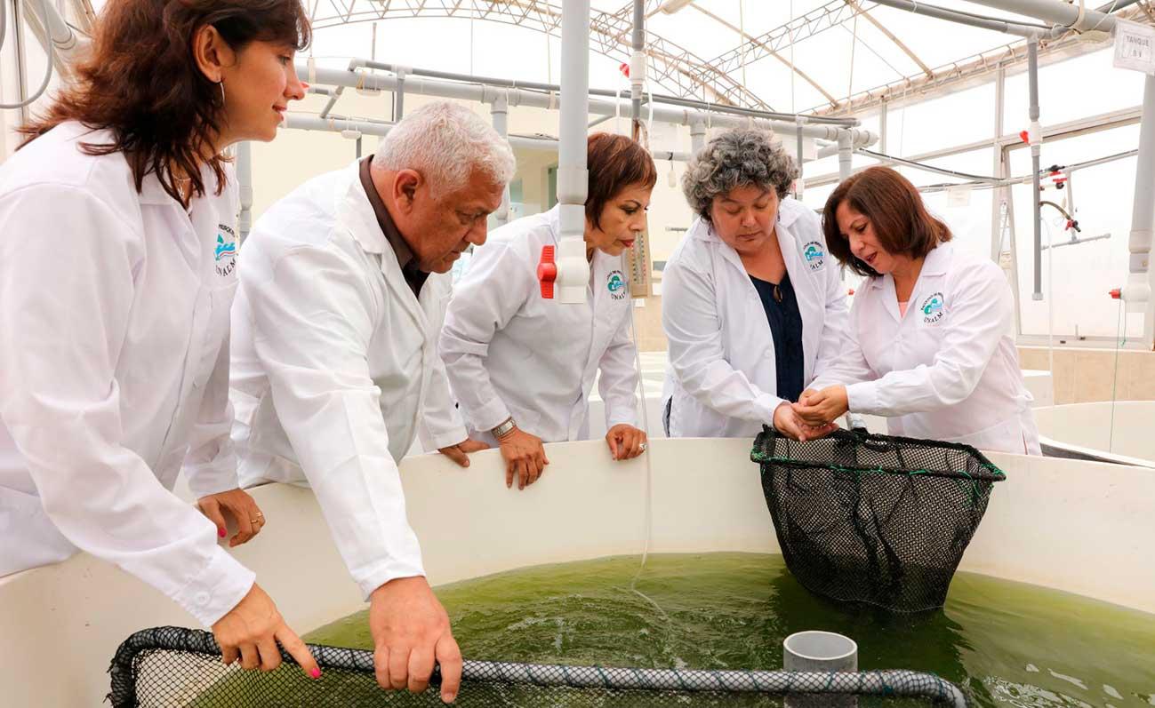 Con la RED IDi más de 1,800 científicos y 500 laboratorios de universidades ofrecen soporte a MiPyMES
